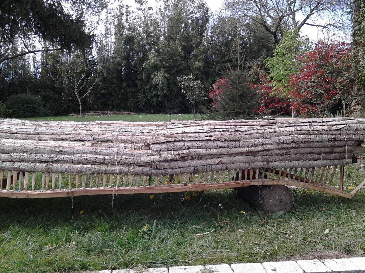 Construction d'un canoë Naturel
