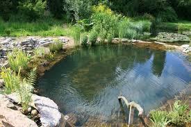 la piscine ecologique