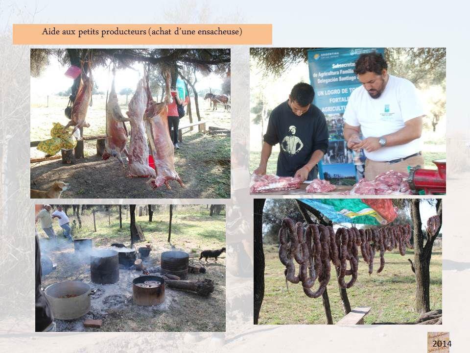 Sachayoj aides locales