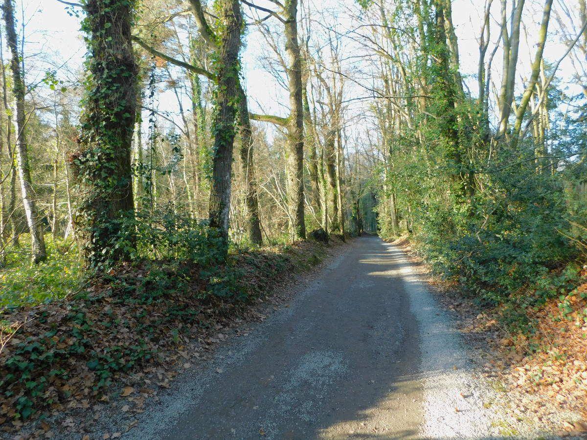 """Boucle """"Rennes Nord / St Grégoire"""" - 25,3 km"""