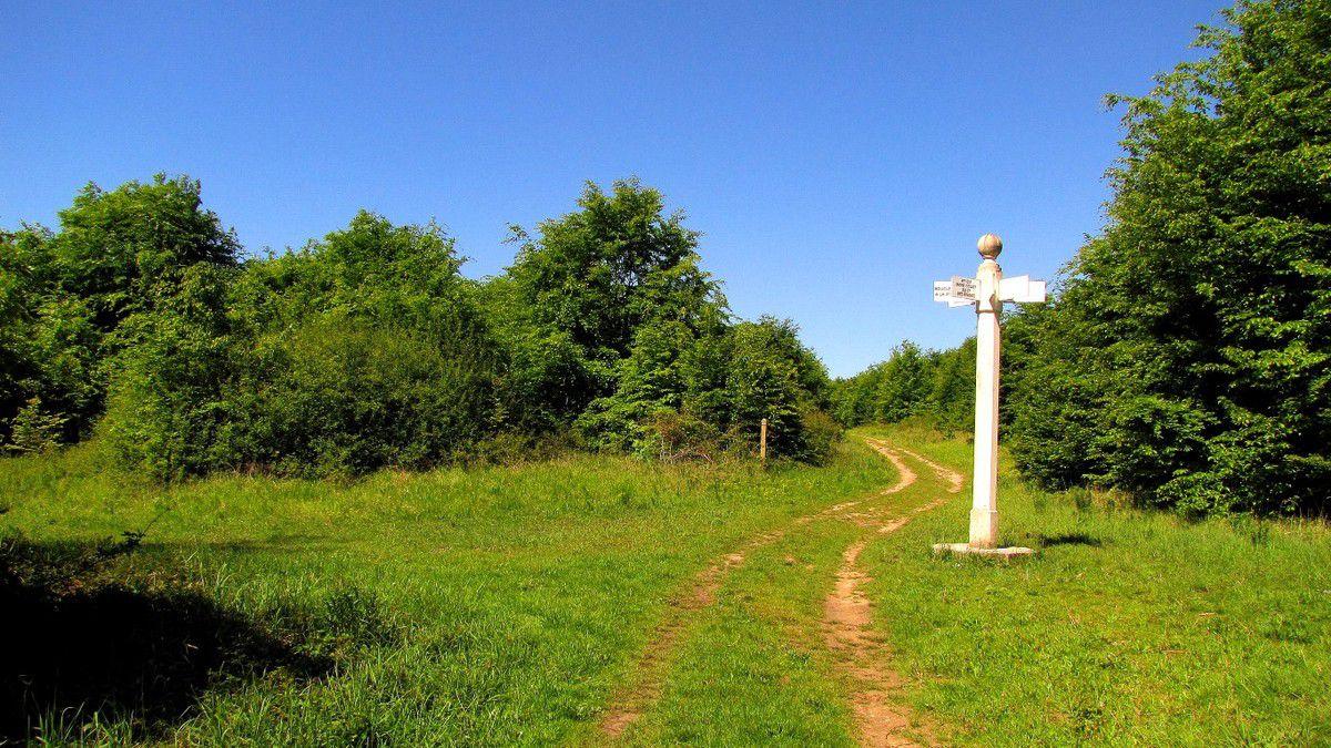 Routes Forestières en forêt de Compiègne
