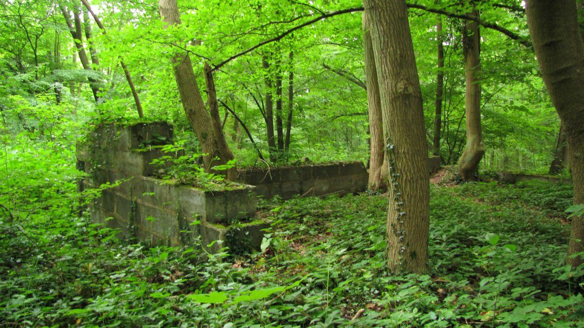 ruines poste observation allemand (seconde guerre mondiale)