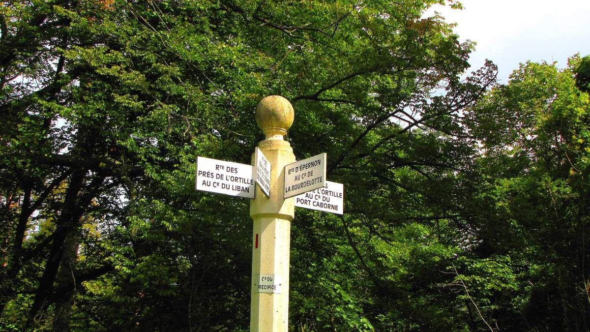 en forêt de Compiègne, le carrefour du Précipice de l'Ortille