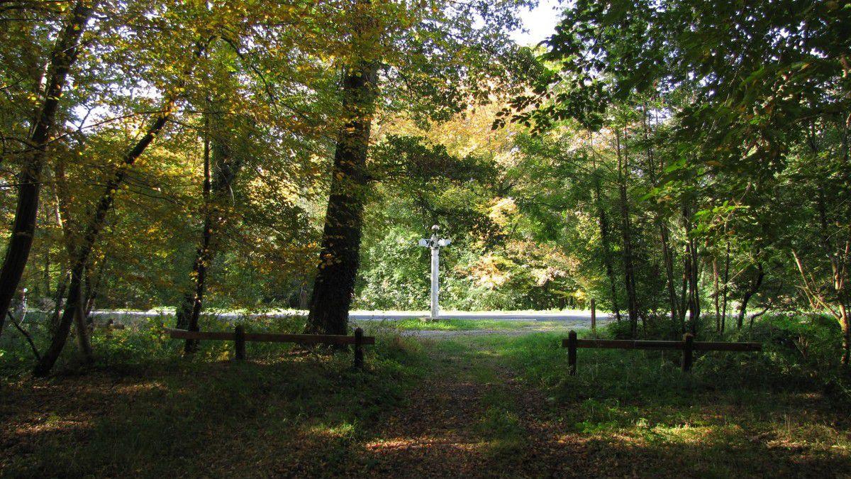 le carrefour de l'Oiseau en forêt de Compiègne