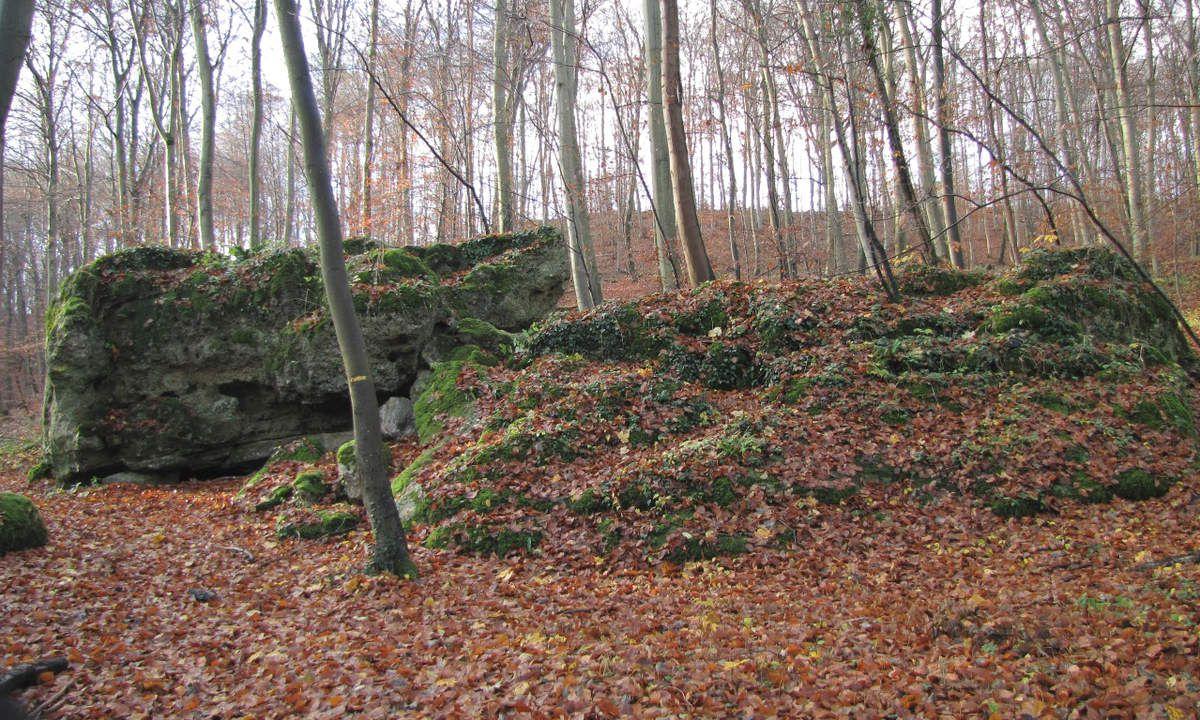 la Pierre Torniche en forêt de Compiègne