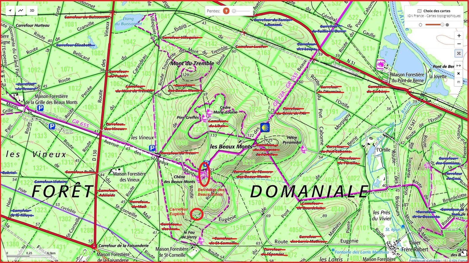 en forêt de Compiègne, le carrefour de Bourdelotte