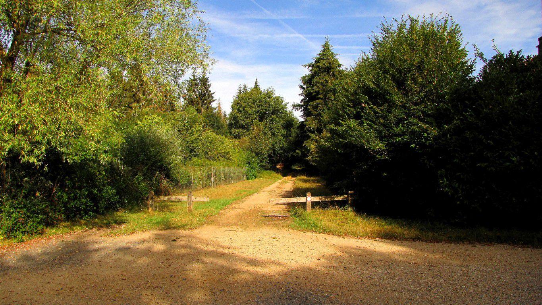 en forêt de Compiègne_des carrefours sans nom