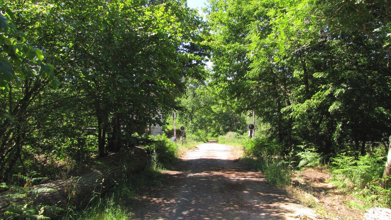 Randonnée en forêt de Compiègne_autour du Buissonnet et du Berne
