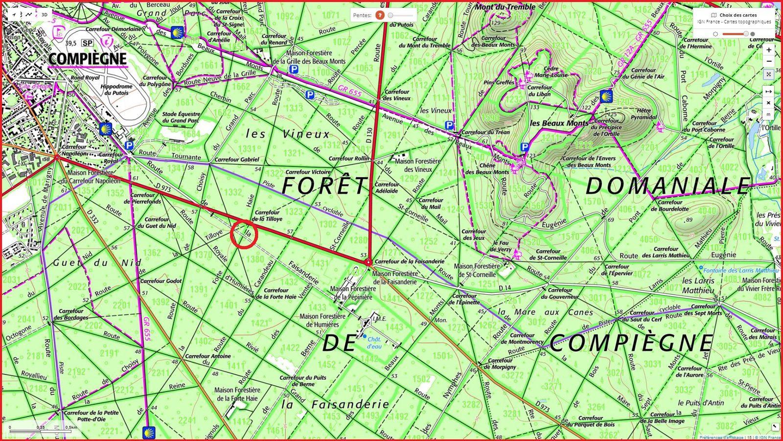 carrefour_Route de la Faisanderie_Route de la Forte Haie