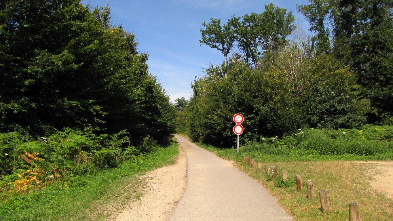 Randonnée en forêt de Compiègne_la Croix Saint-Sauveur_le Ru du Goderu