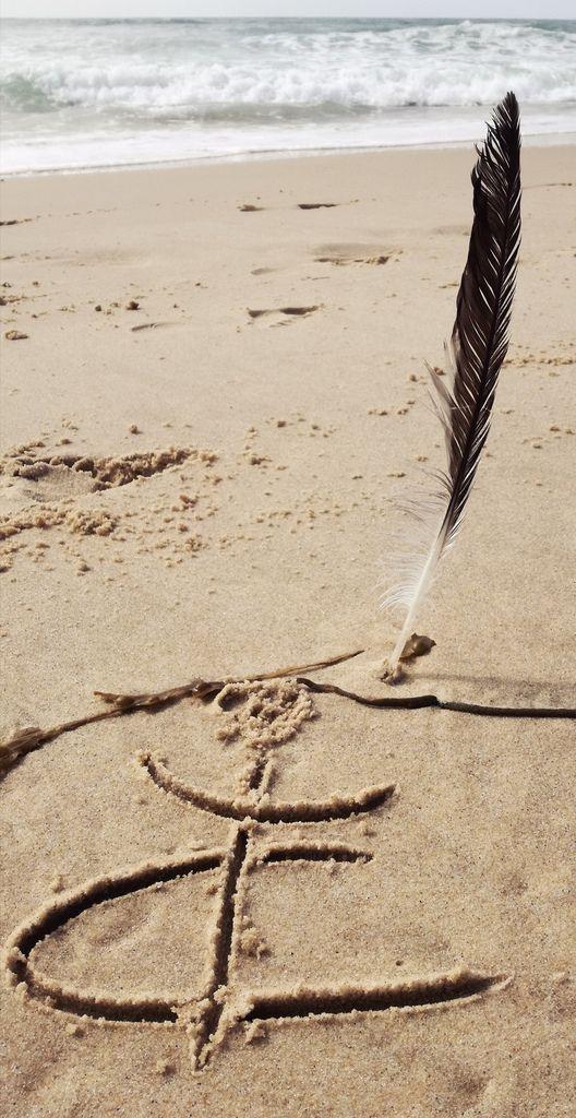 Plume trouvée sur la plage de Lacanau - Photographie Christine Longo