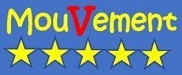 Pourquoi créer un mouvement 5 étoiles en France?