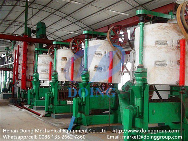 groundnut oil processing plant