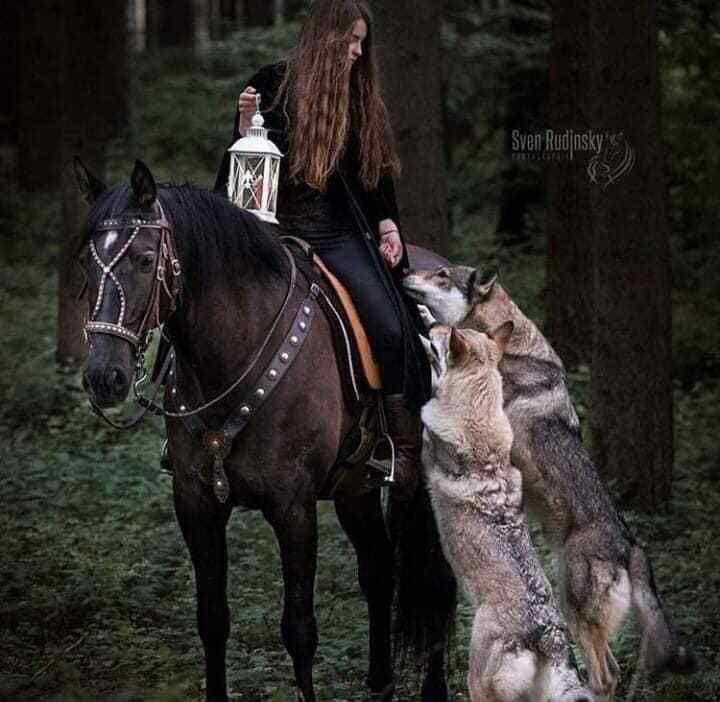 Léa Northmann : les chevaux des dieux