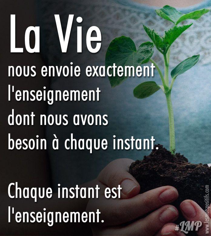 #enseignement #vie
