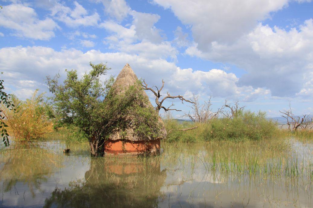 Vallée du Rift et derniers jours au Kenya !
