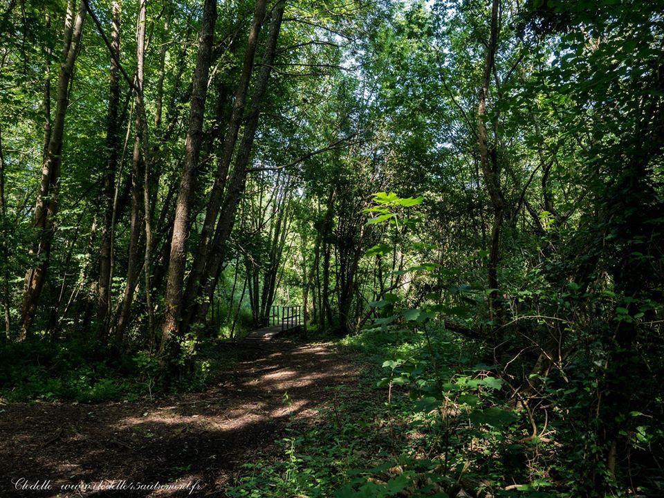 Parc Naturel Départemental des Courtils et des Mauves à Meung sur Loire (Loiret)