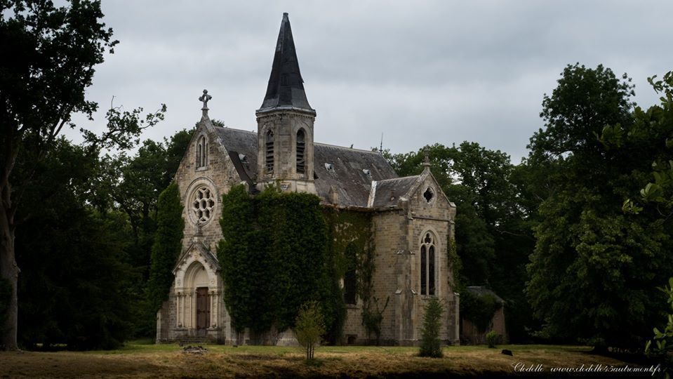 Parc du Château de La Ferté Saint Aubin (Loiret)