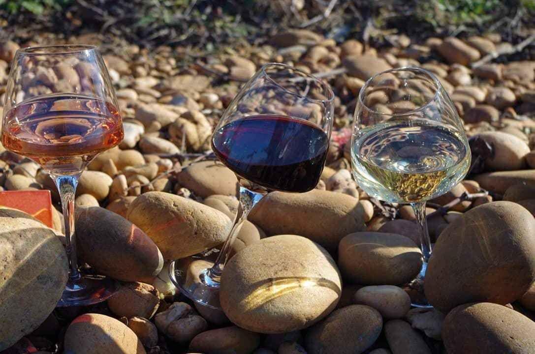 Vendredi 28/06/2019 dès 18h30 : Promenade guidée et Dégustation de Vins avec Pierrick Le Grand du Château Bolchet