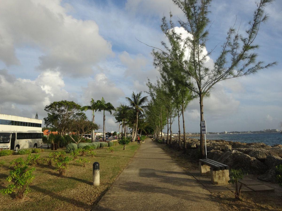 Qu'il était long le chemin qui mène aux autorités de La Barbade. Surtout à pied sous le soleil.