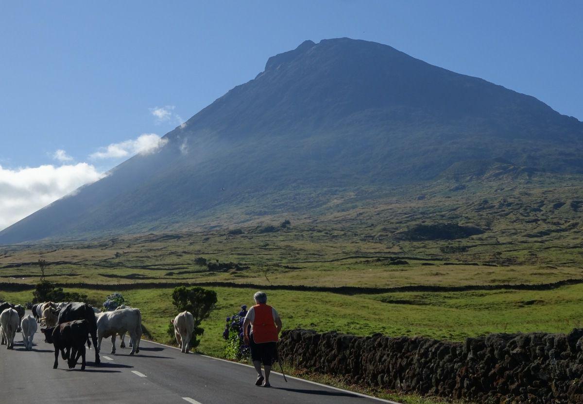 Les Açores, on adore !