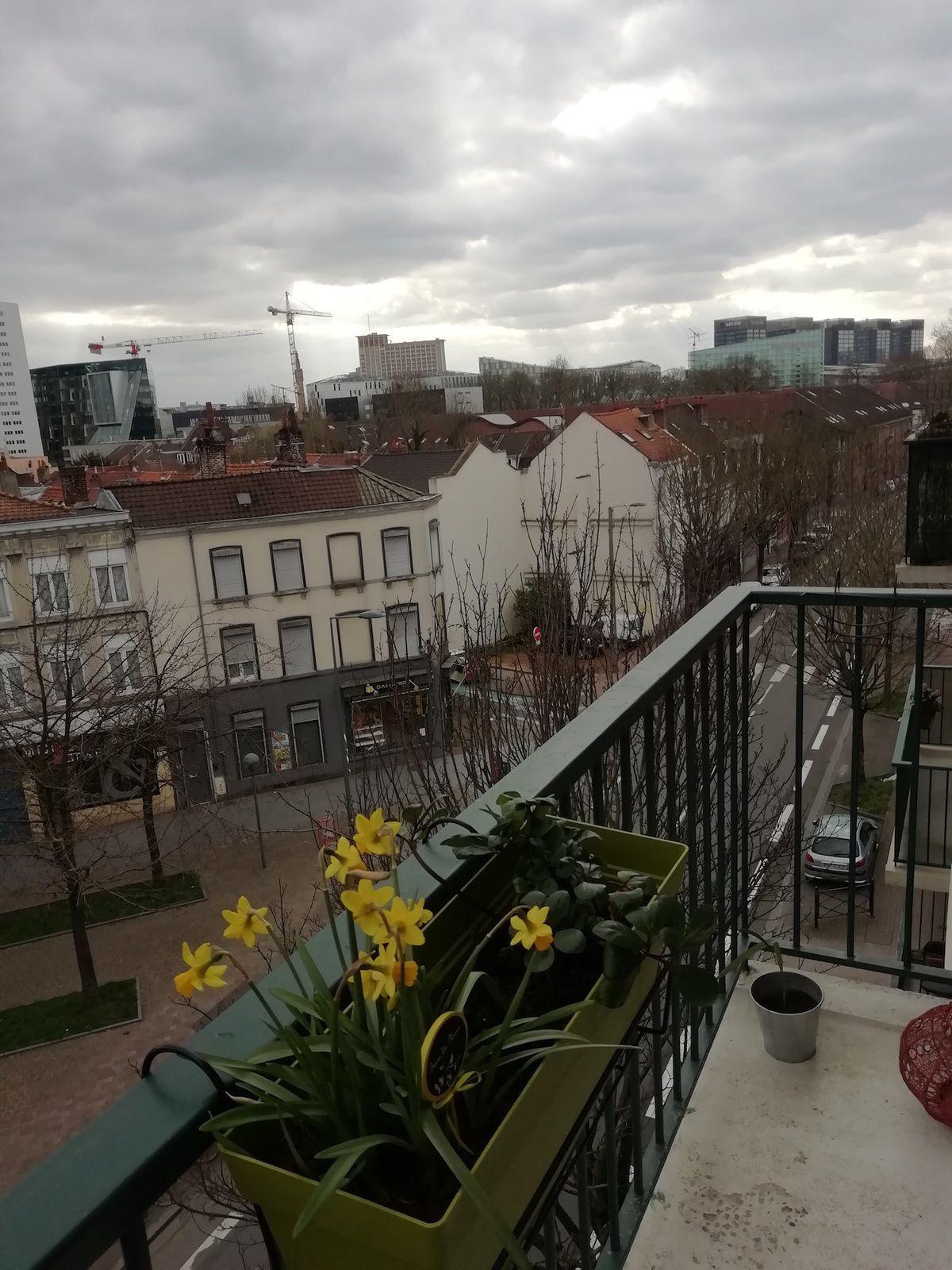 Par la fenêtre d'Isabelle, à Lille-Fives.