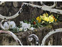 Des Vieilles Pierres et des fleurs..