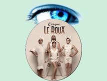 The Elephant In The Room par le Cirque Le Roux - Impressions