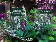 Rolande votre fleuriste Toussaint à Narbonne