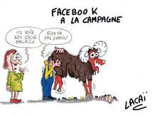 facebook à la campagne