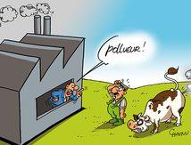 dessin pollution et accusation...dessin de chaunu