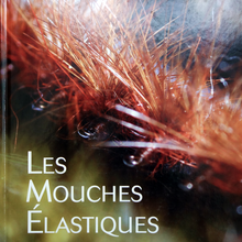Les mouches élastiques de Philippe Geneix