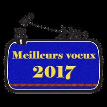 BONNE ANNÉE, MEILLEURS VŒUX 2017