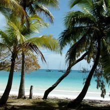 Saga Néo-Calédonienne... Fin de la 1ère semaine en gite à Païta.