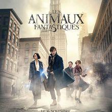 Critique Ciné : Les Animaux Fantastiques (2016)
