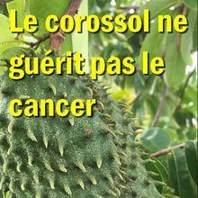 Les arnaques-santé par les plantes : le corossol ne guérit pas le cancer !