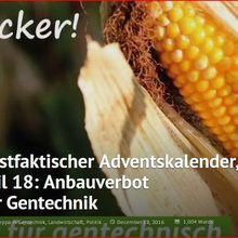 Un calendrier de l'Avent postfactuel: (18) l'interdiction de cultiver des OGM