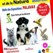 Salon des ANIMAUX samedi 16 et dimanche 17 septembre 2017 de 9h30 à 19h.