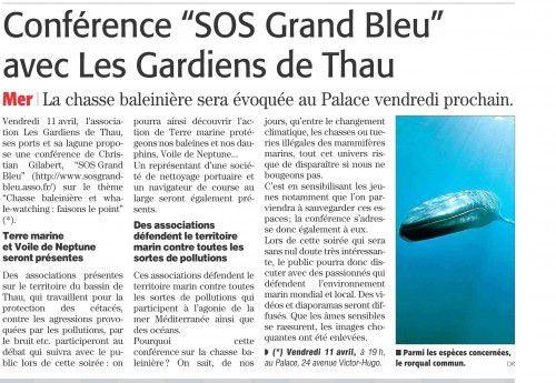 conference baleines 5 avril 2014.jpg