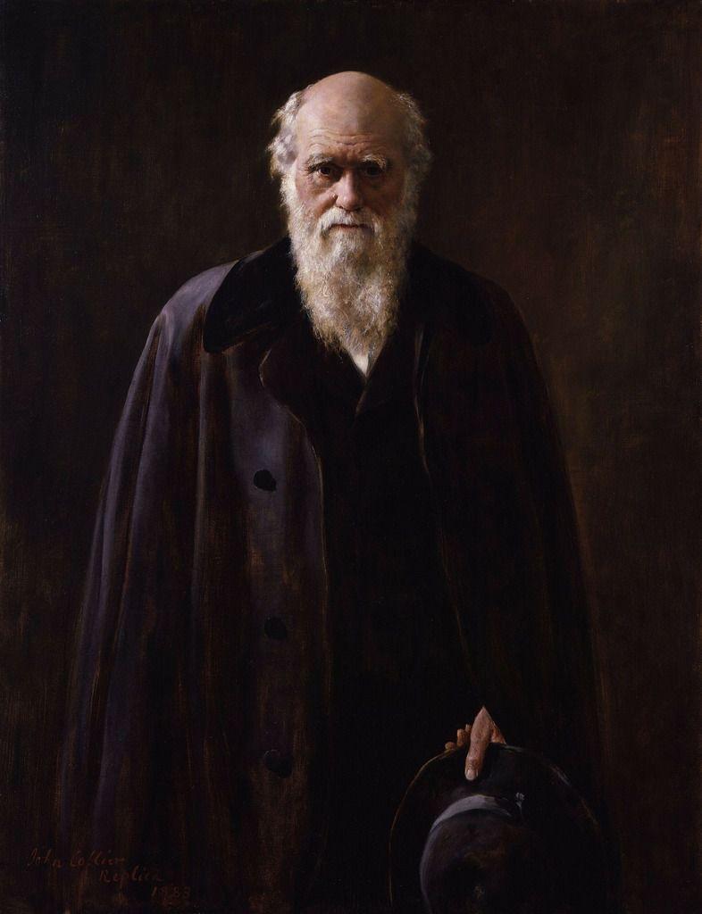 Charles Robert Darwin, Naturaliste, Géologue et Biologiste Anglais, connu pour ses travaux sur les mécanismes de l'évolution.