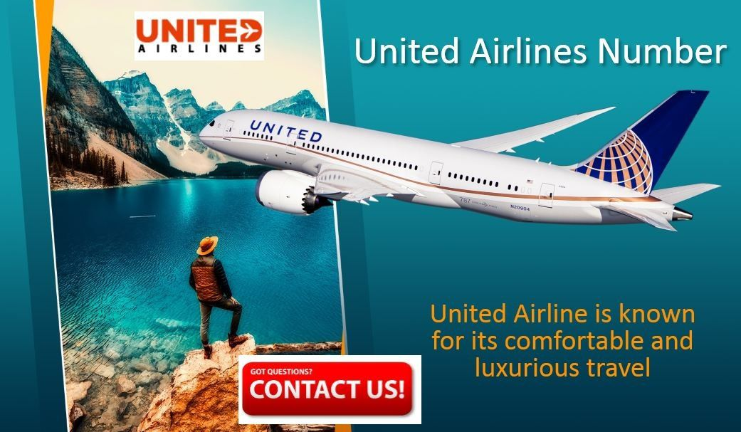 How Can We Help The Passenger Via United Airlines Customer Service Phone Number United Airlines Customer Service Phone Number