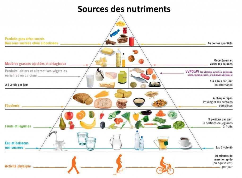 nutriments, pyramide alimentaire, fruits, légumes, céréales, poissons, viande, activités pysique