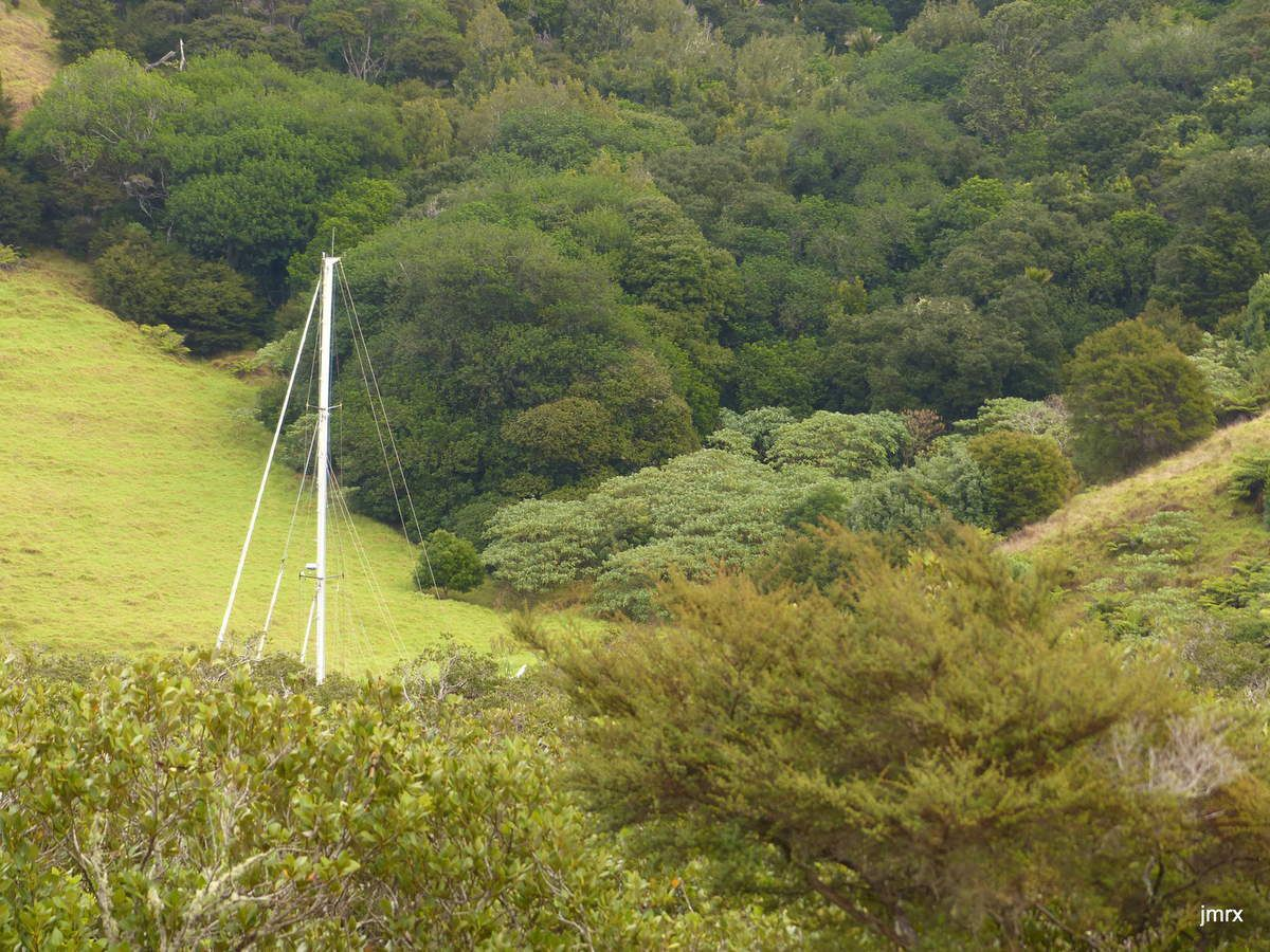 Wahieke Island , banlieue de Auckland.