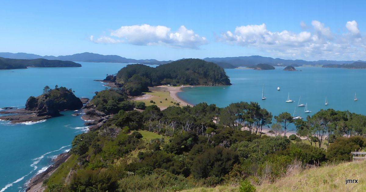 Bay of Islands (Roberton Island), danse avec les dauphins.