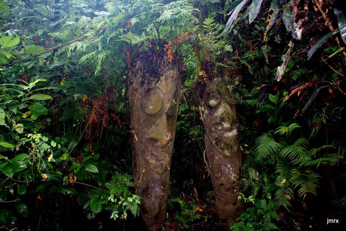 A Ambrym les sculpteurs utilisent la fougère arborescente. Dessins sur le sable noir du volcan.