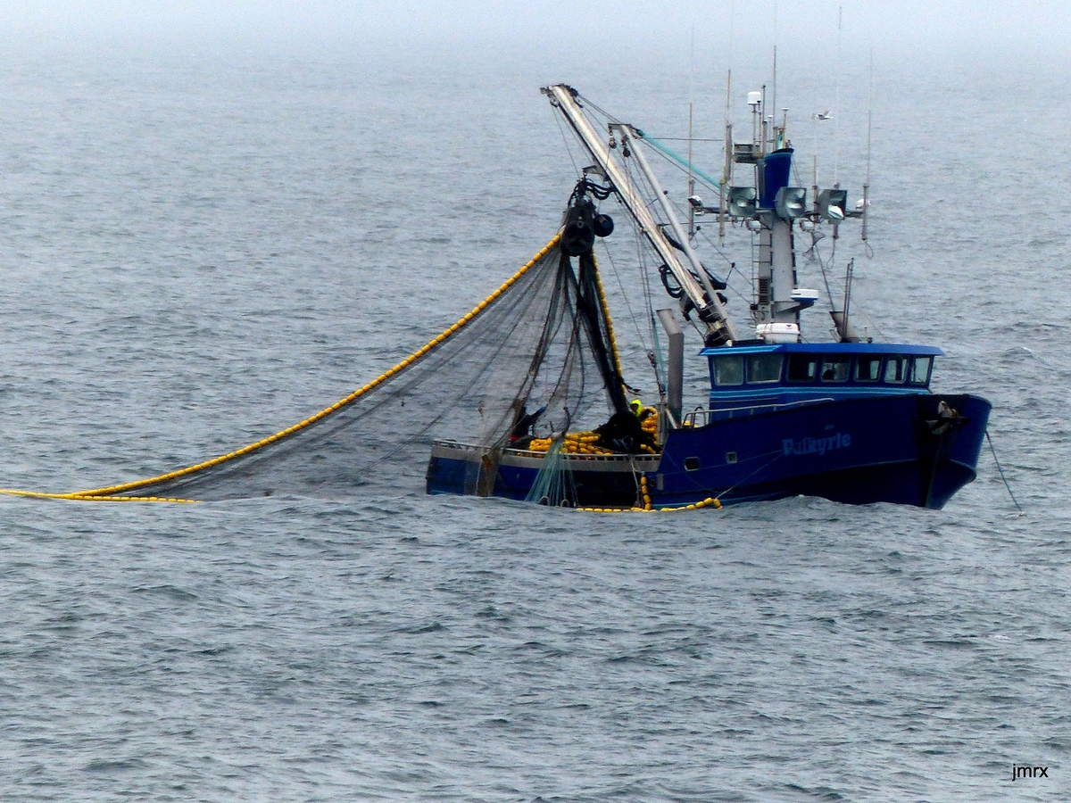 Cape Alitak. Senneurs en pêche.