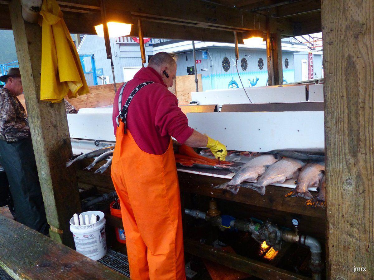 Comme dans chaque port une stalle permet à tous de vider et préparer ses prises.