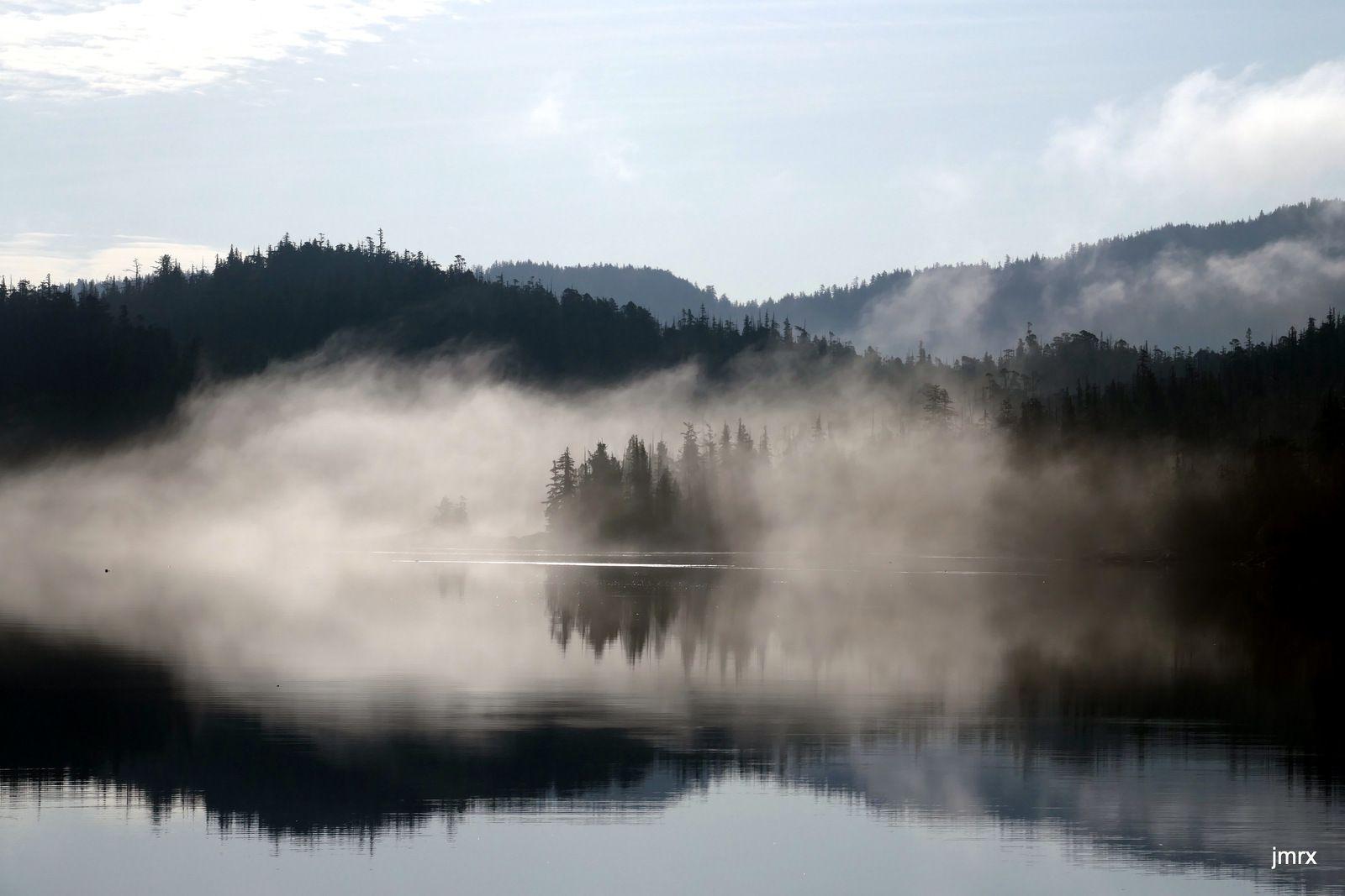 Les beaux paysages de Prince of Wales Island par temps de brouillard. Et puis des crabes en veux tu en voilà!