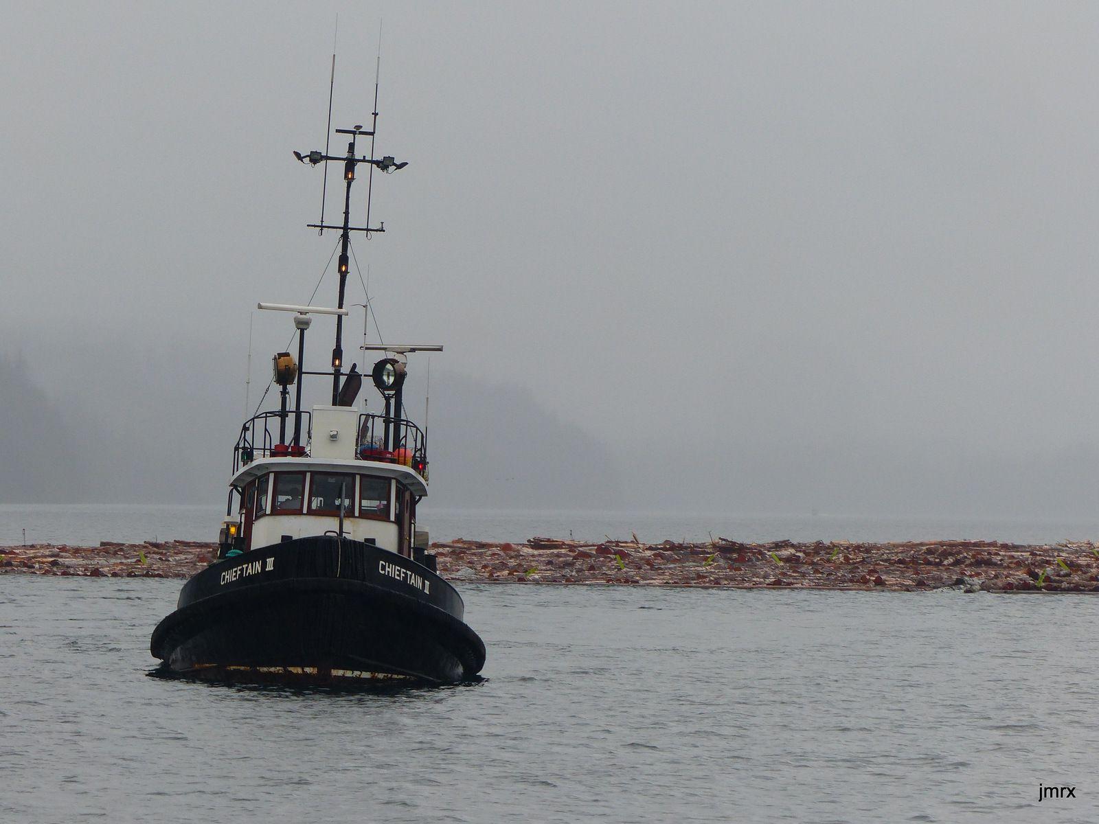 Les admirables convois de barges et de véritables îles de bois flottés dans le Inside Passage.