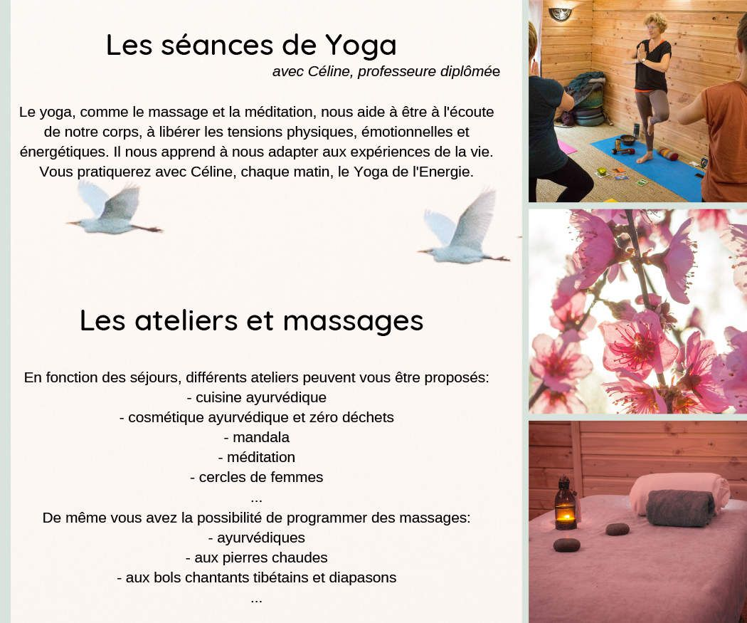 Les stages Yoga